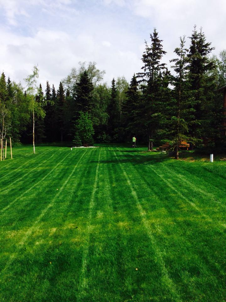 Anchorage lawn mowing